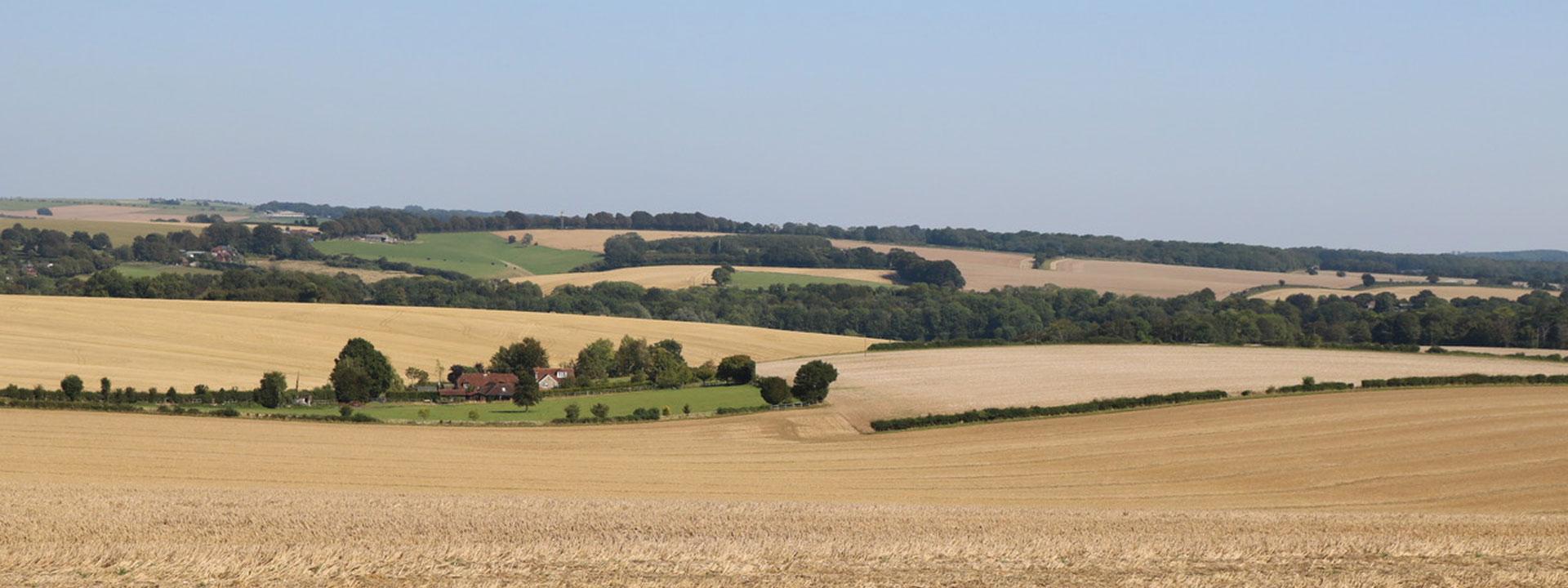 Bishops Waltham, Hampshire